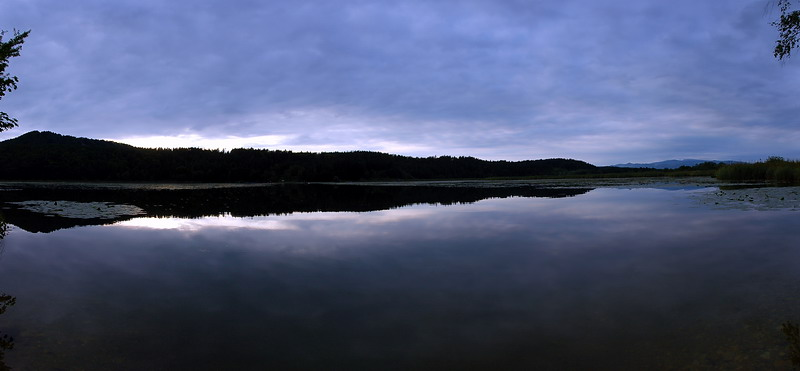 Am Gösselsdorfer See