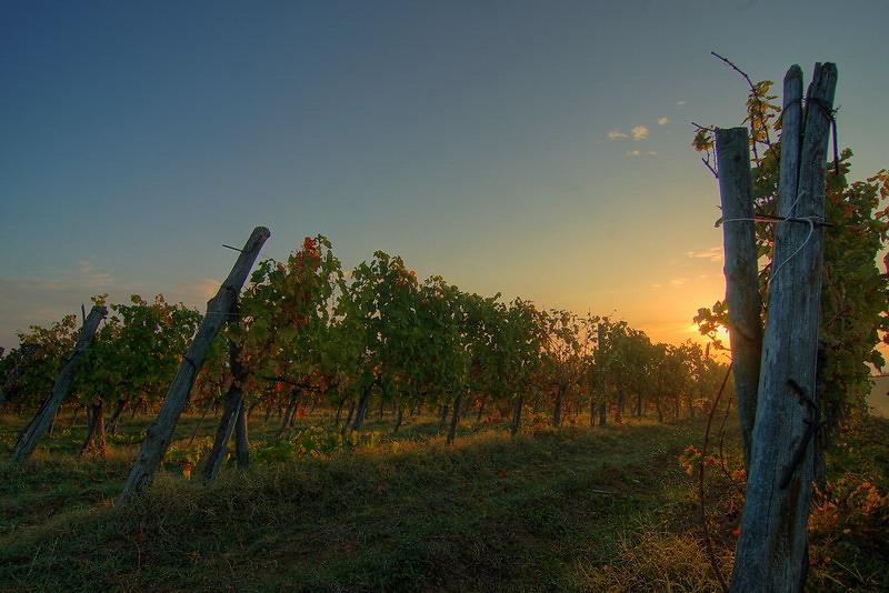 Sonnenaufgang in der Toscana…