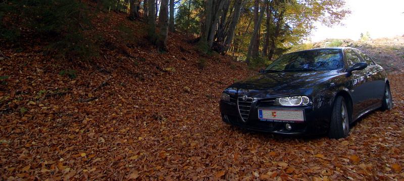 Ein Alfa im Herbstlaub…