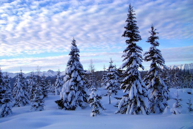 Skifahren am Goldeck…