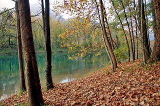 Lago di Cavazzo - Herbstlaub
