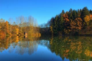Moosburger Mühlteich im Herbst