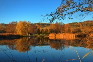 Tigringer Teich im Herbst