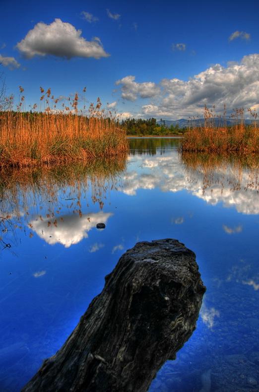 Am idyllischen Kleinsee
