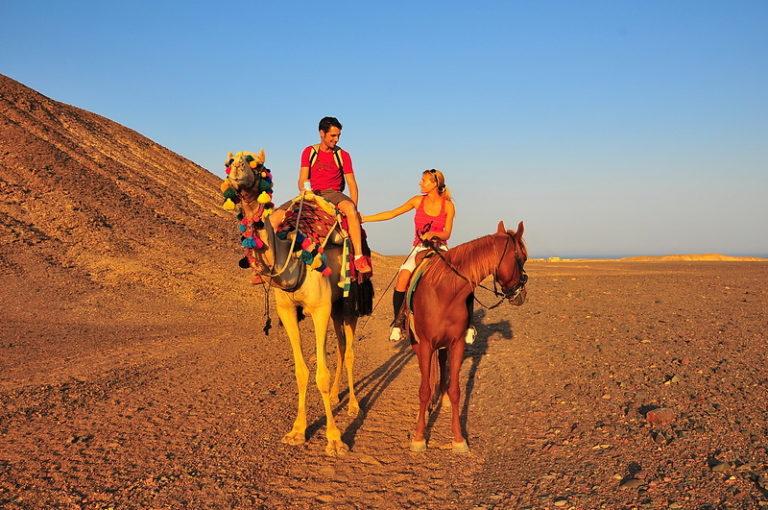Auf Pferd und Kamel in den Sonnenuntergang
