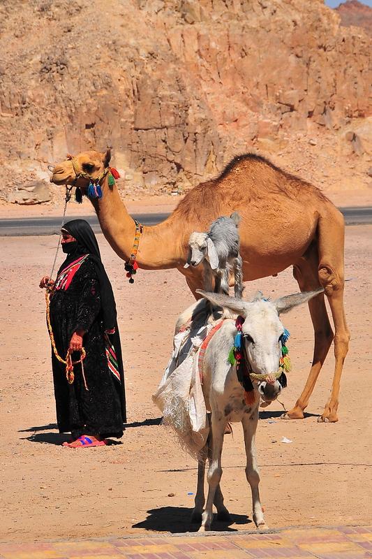 Ägypten einmal anders