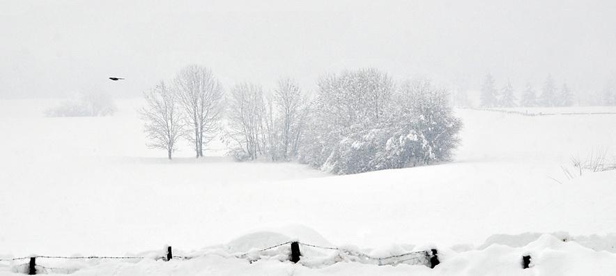 Winteridylle…