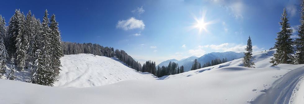 Skitour Gartnerkofel Nord (2.195)
