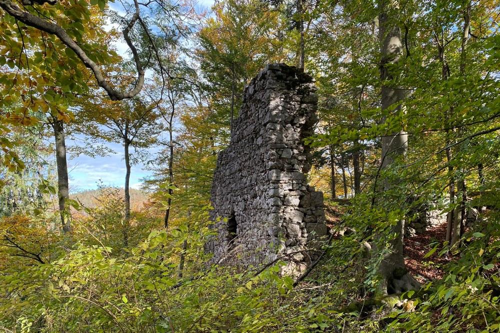 Ruine Federaun